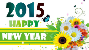 Happy-New-Year-2015-With-Fl